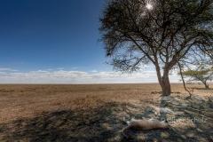 Fast versteckt: Schattenplätzchen